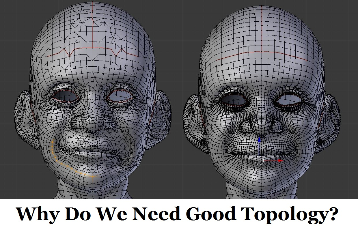 Why Do We Need Topology in 3D Modeling